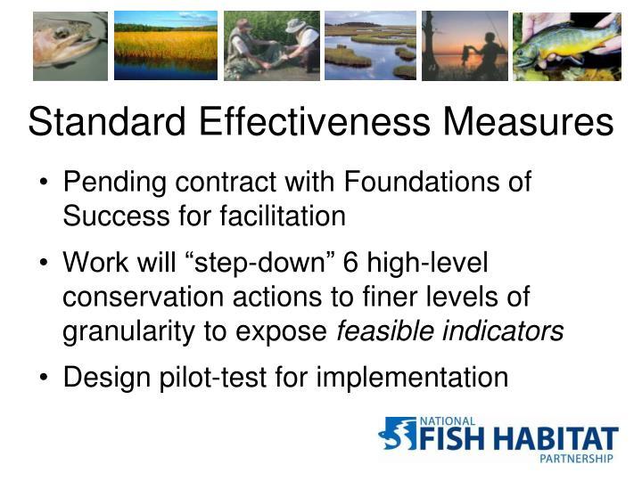 Standard Effectiveness Measures