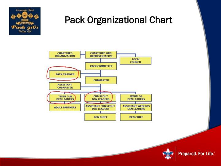 Pack Organizational Chart