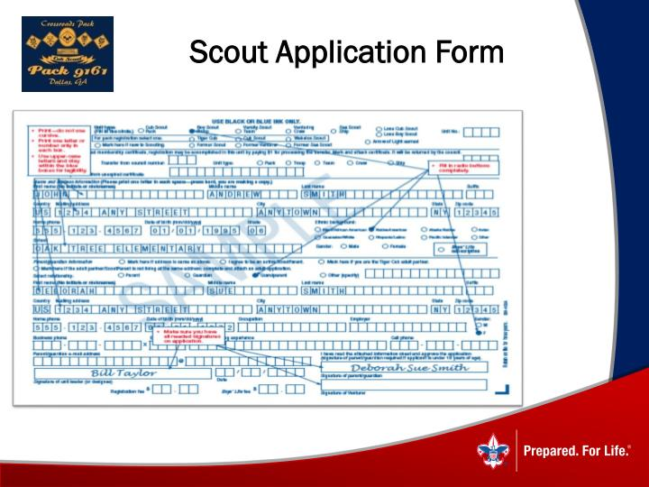 Scout Application Form