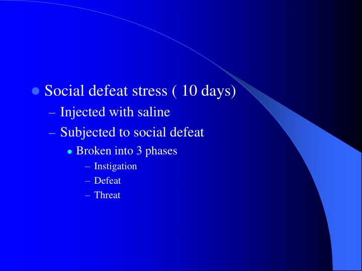 Social defeat stress ( 10 days)