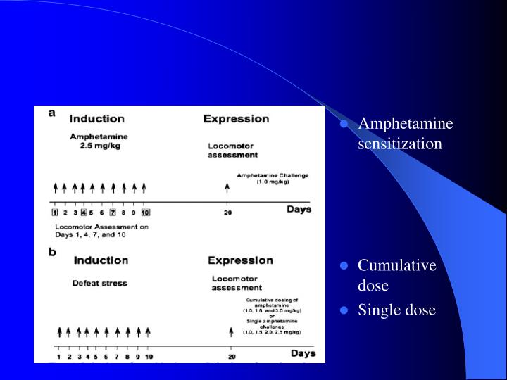 Amphetamine sensitization