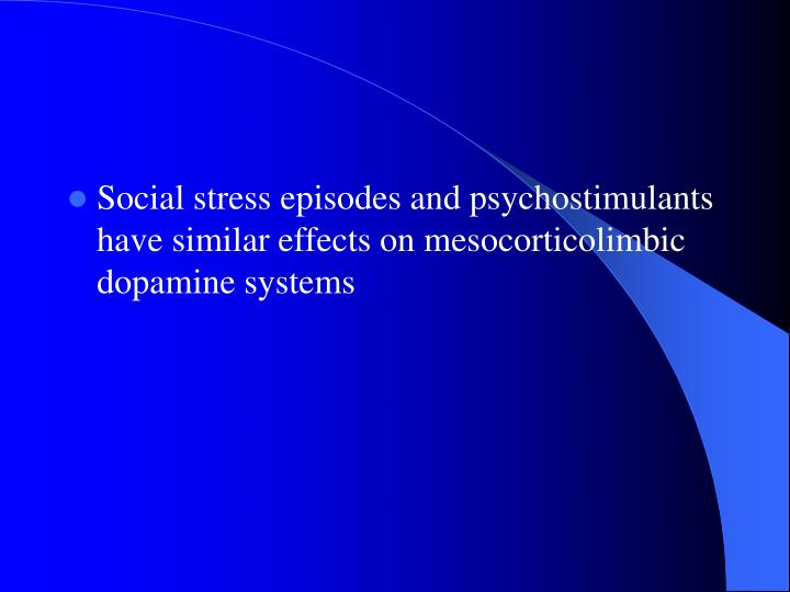 Social stress episodes and psychostimulants have similar effects on mesocorticolimbic dopamine systems