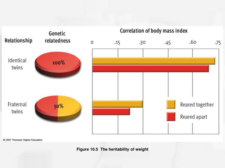 Figure 10.5  The heritability of weight