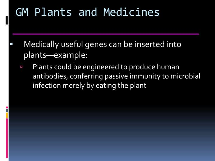 GM Plants and Medicines