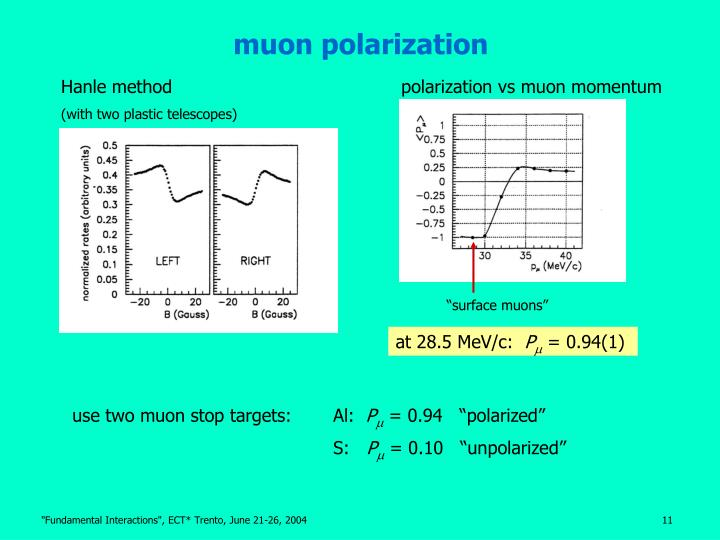 muon polarization