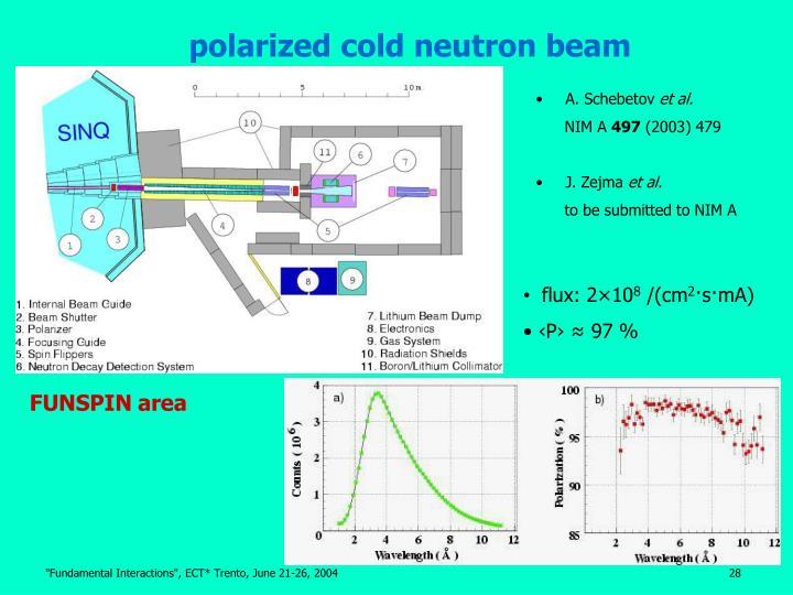polarized cold neutron beam