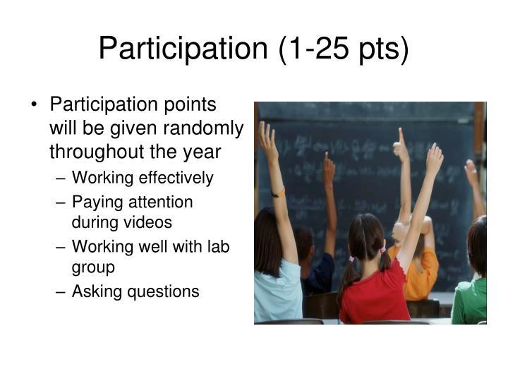 Participation (1-25 pts)