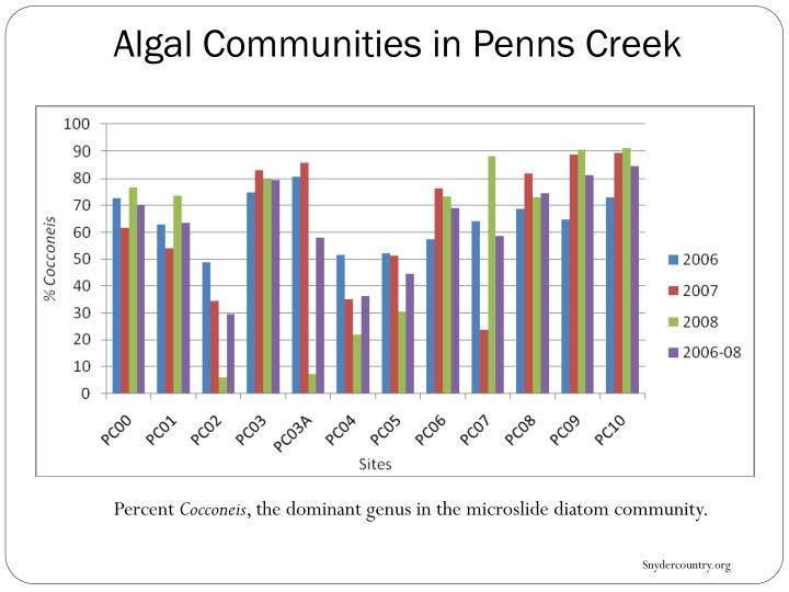Algal Communities in