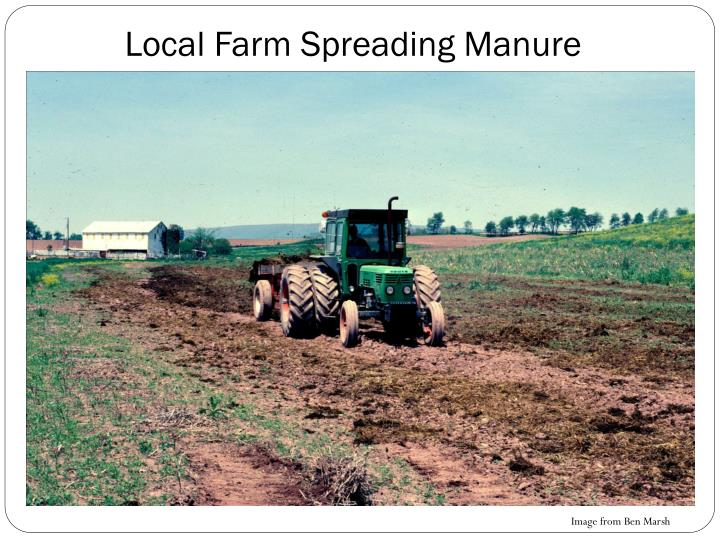 Local Farm Spreading Manure