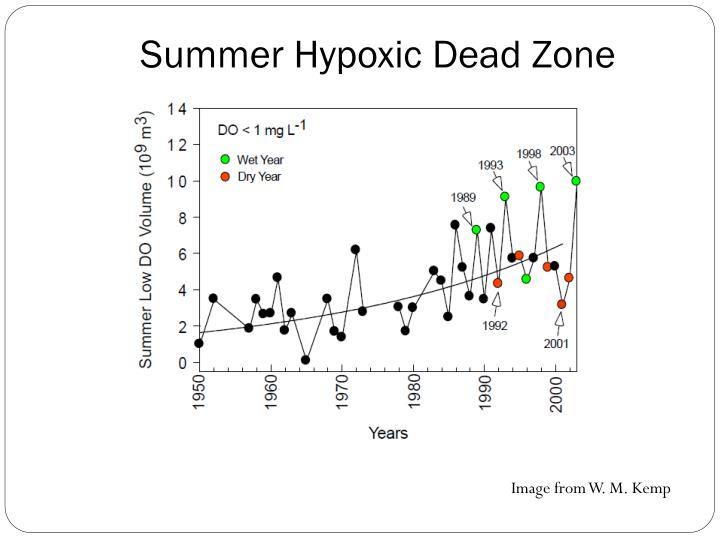 Summer Hypoxic Dead Zone