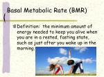basal metabolic rate bmr