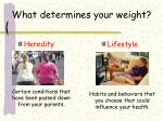 what determines your weight