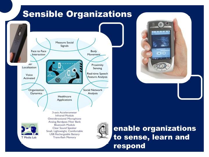 Sensible Organizations