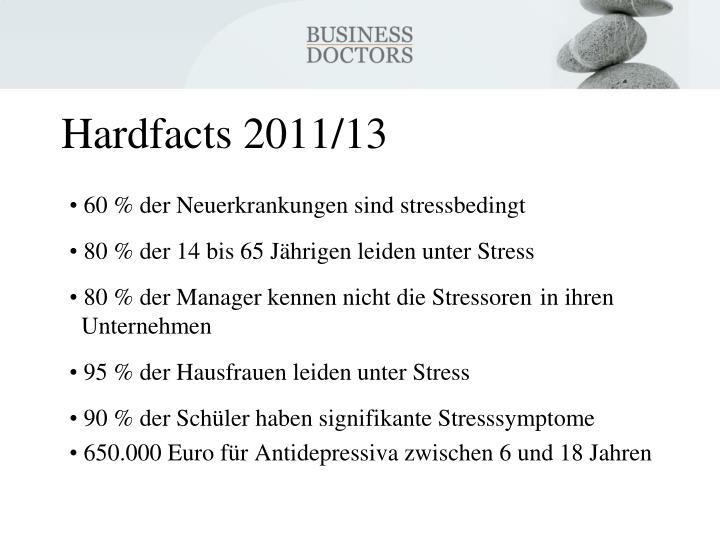 Hardfacts 2011/13