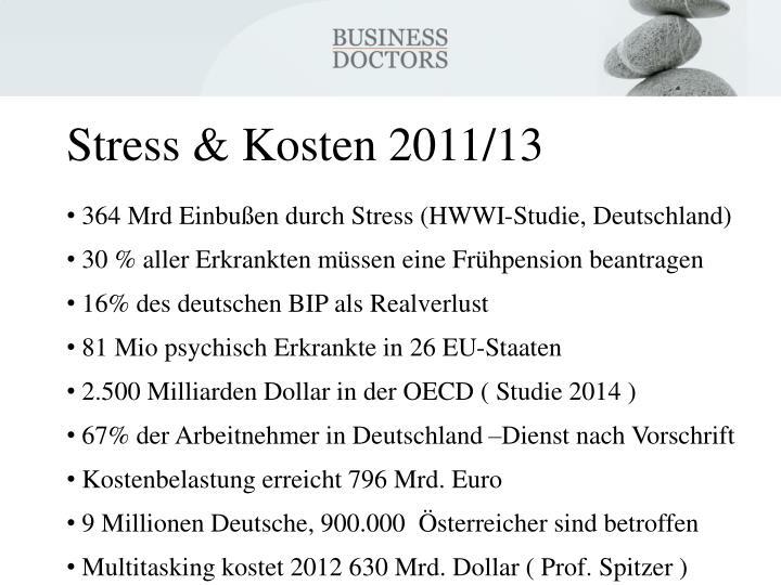 Stress & Kosten 2011/13