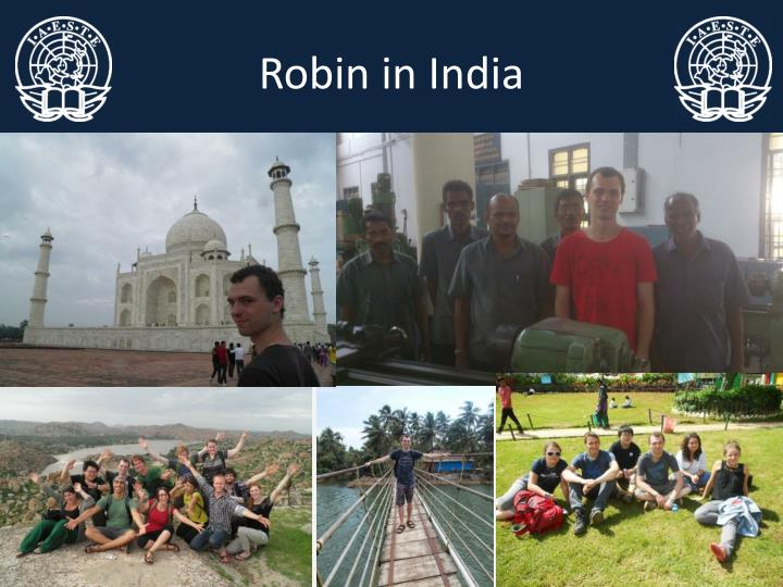 Robin in India