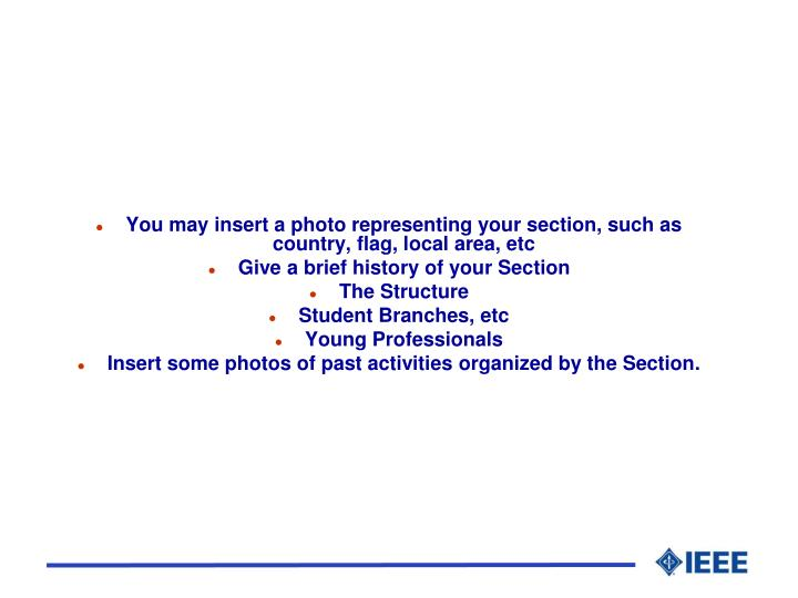 You may insert a photo representing your section, such as country, flag, local area, etc
