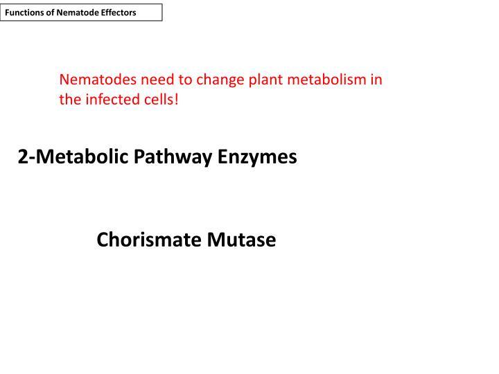 Functions of Nematode Effectors