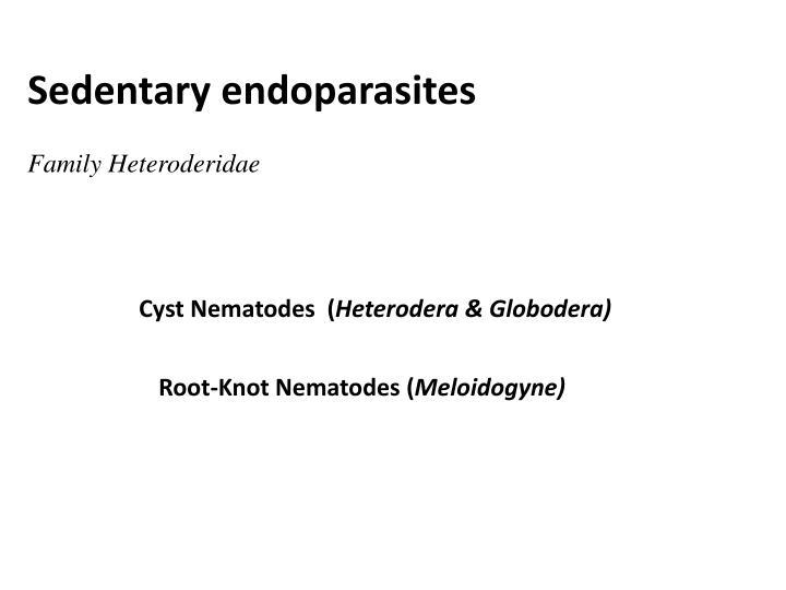 Cyst Nematodes  (