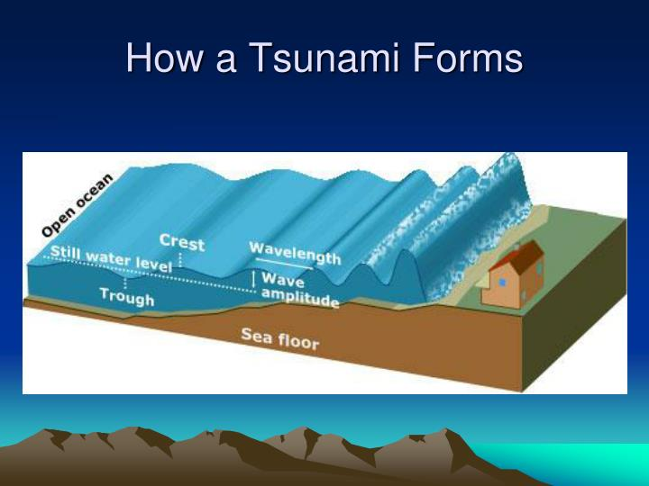 How a Tsunami Forms