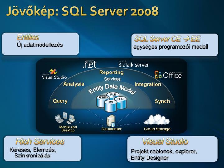Jövőkép: SQL Server 2008