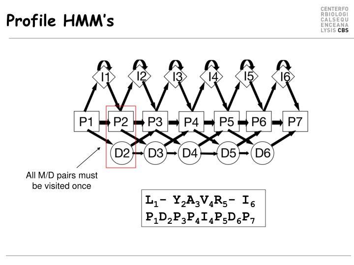 Profile HMM's