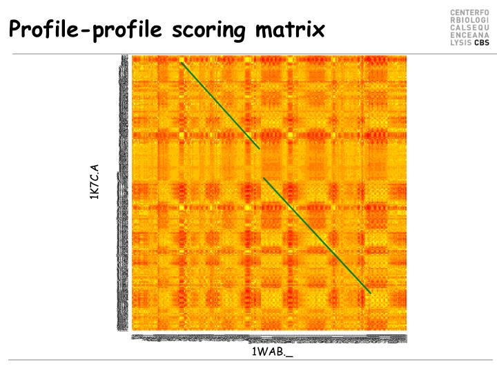 Profile-profile scoring matrix