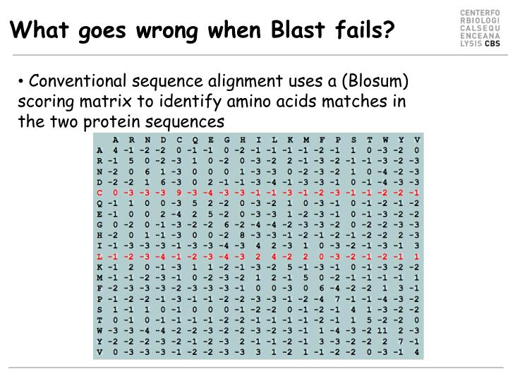 What goes wrong when Blast fails?