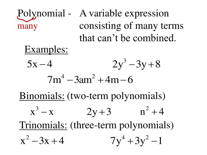 Polynomial -