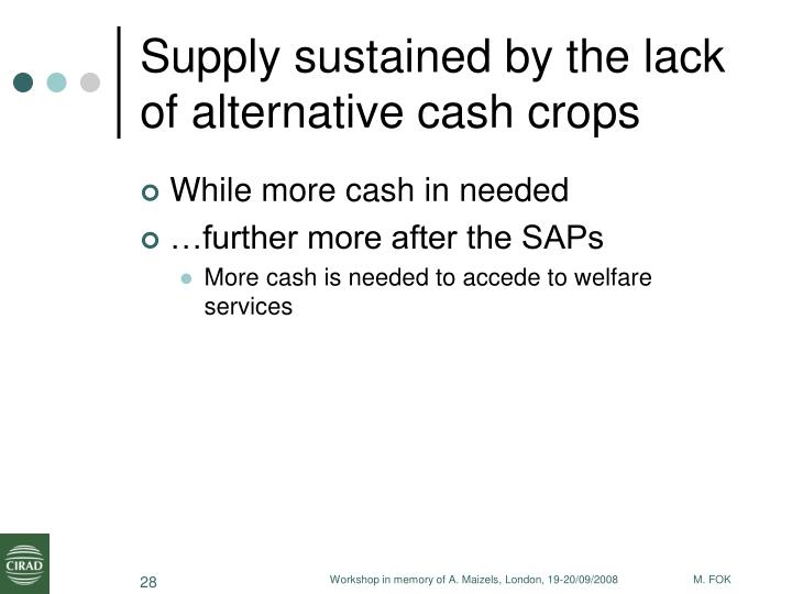 Supply sustained by the lack of alternative cash crops