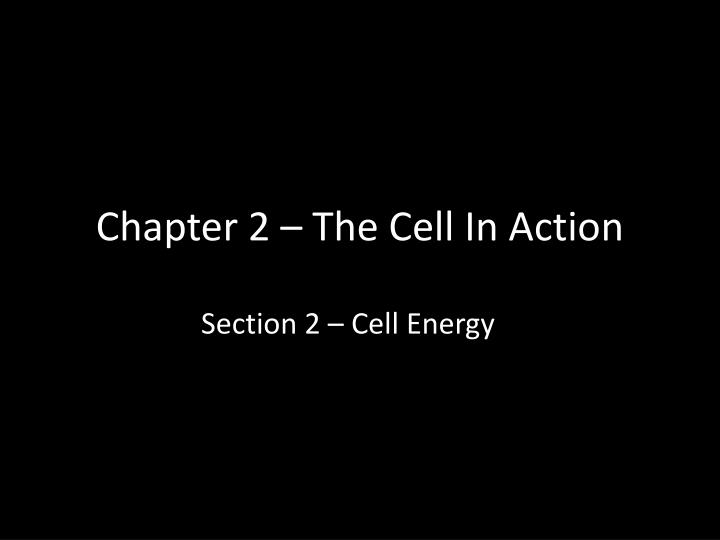 Chapter 2 – The Cell In Action