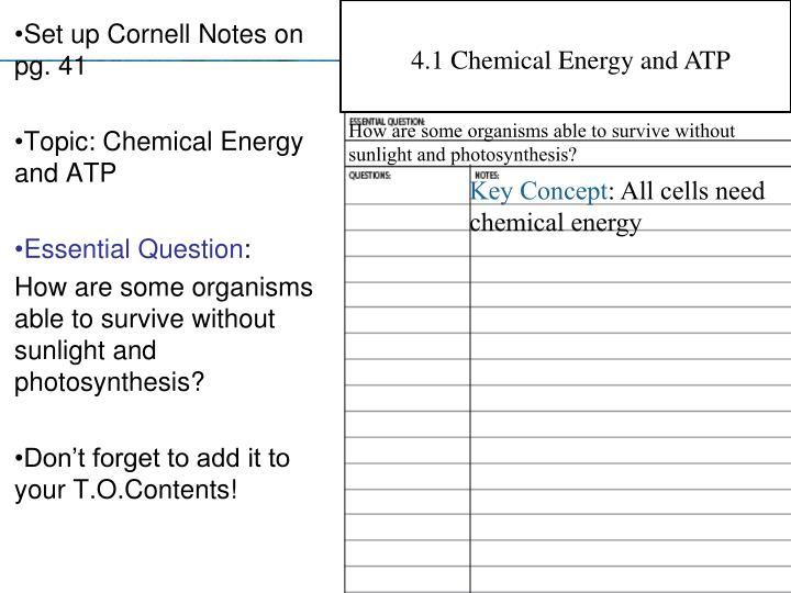 4.1 Chemical Energy and ATP