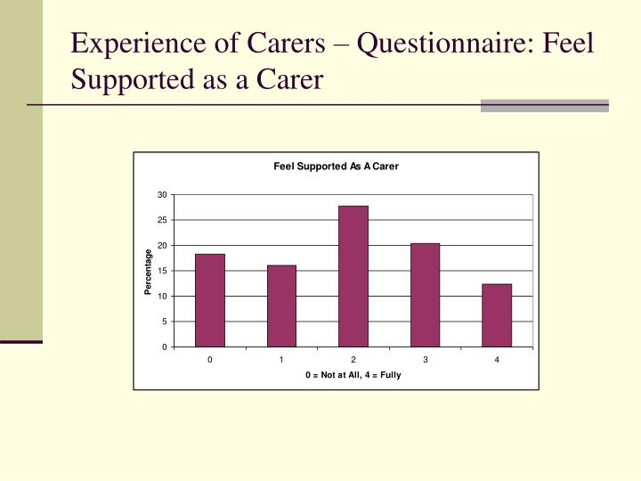 Experience of Carers – Questionnaire: Feel Supported as a Carer