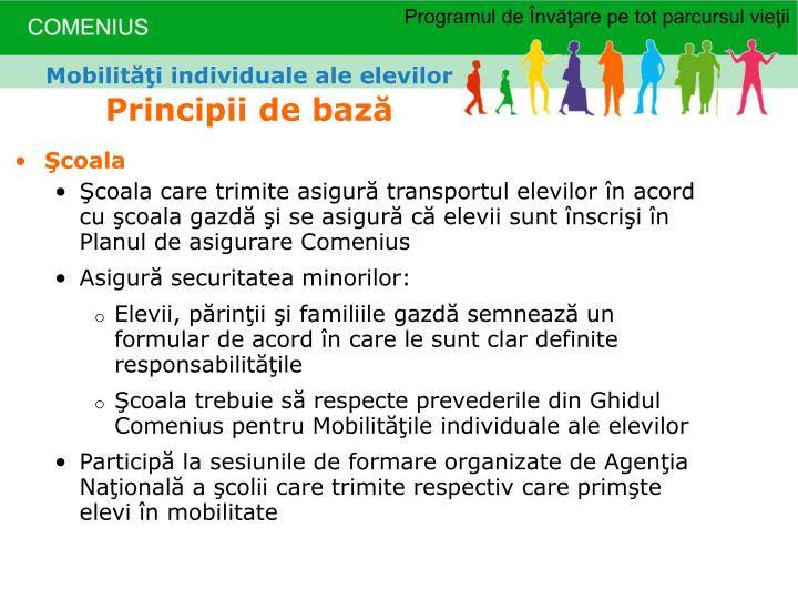 Mobilităţi individuale ale elevilor