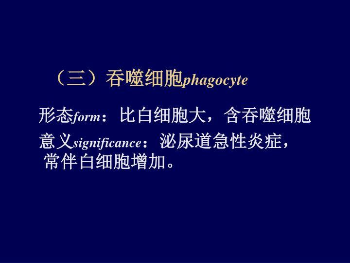 (三)吞噬细胞