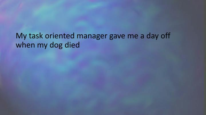 My task oriented manager gave me a day off when my dog died