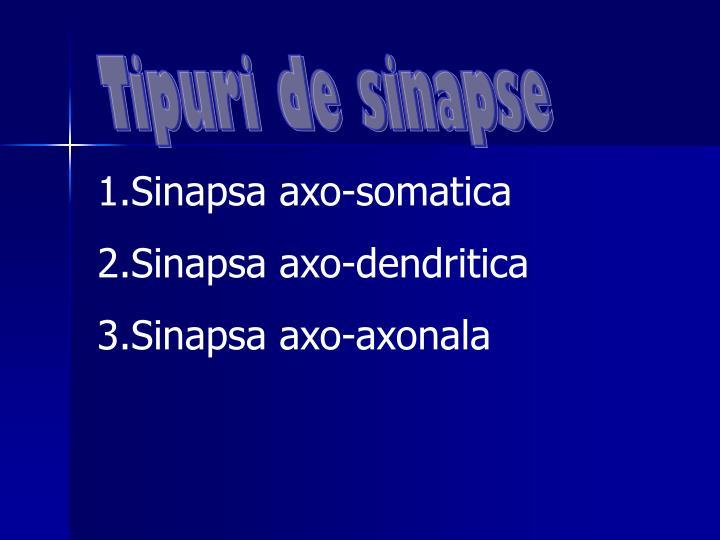 Tipuri de sinapse