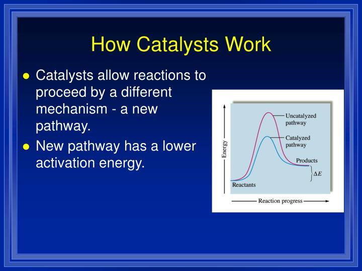 How Catalysts Work