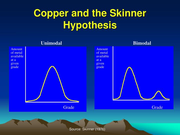 Copper and the Skinner Hypothesis
