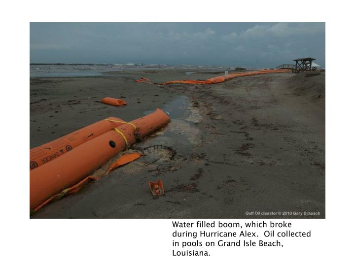 Water filled boom, which broke during Hurricane Alex.  Oil collected in pools on Grand Isle Beach, Louisiana.