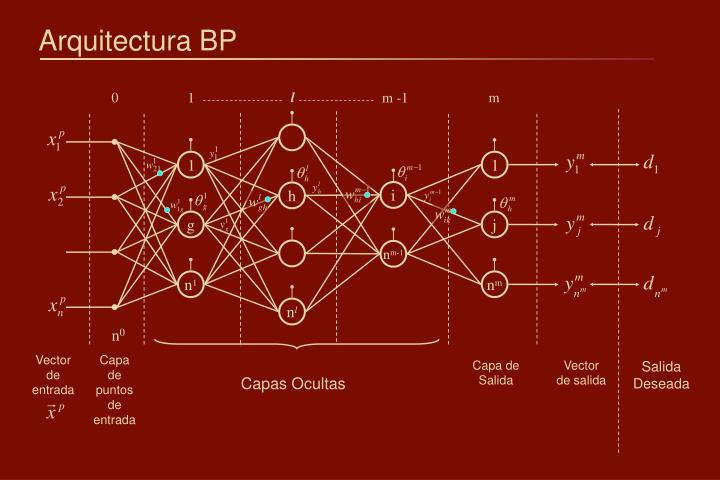 Arquitectura BP