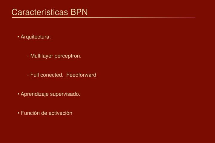 Características BPN