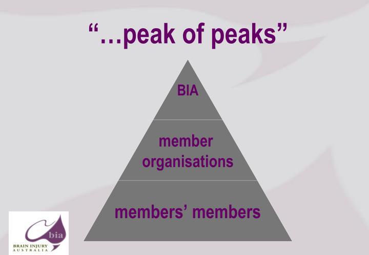 """""""…peak of peaks"""""""