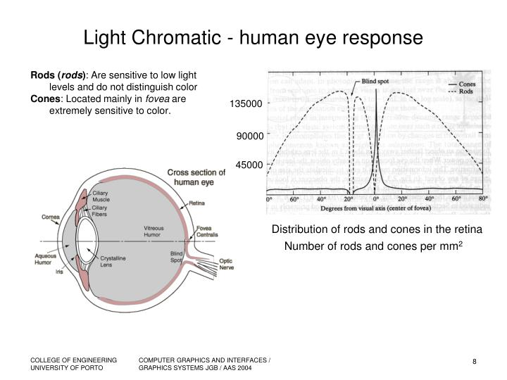 Light Chromatic - human eye response
