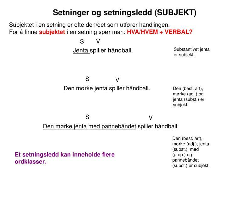 Setninger og setningsledd (SUBJEKT)