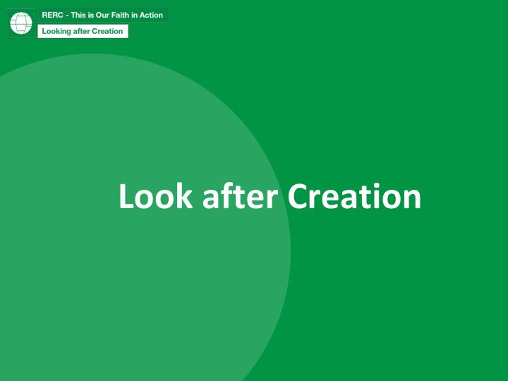 Look after creation