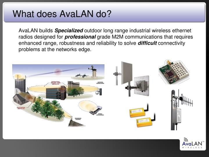 What does AvaLAN do?