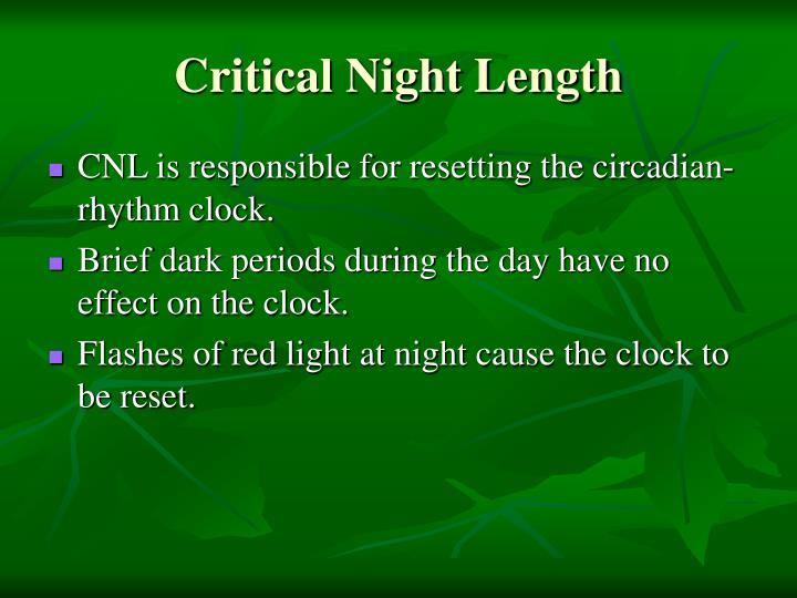 Critical Night Length