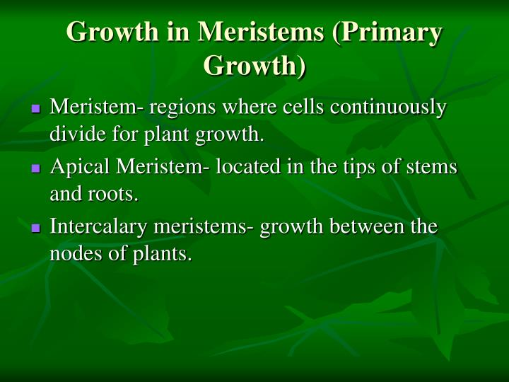 Growth in Meristems (Primary Growth)