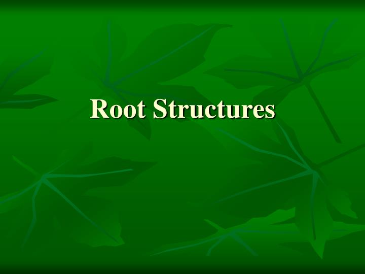 Root Structures